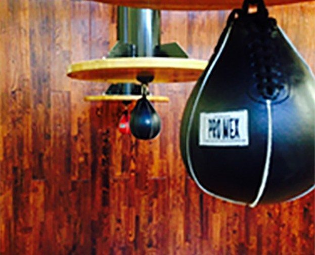 Punching speed bags in boxing gym at Red's in Lafayette, LA.
