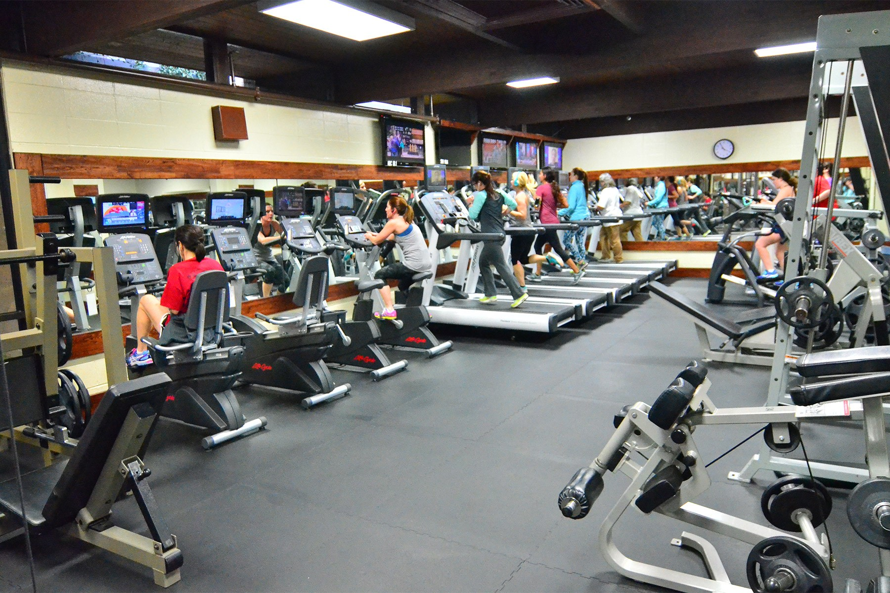 Cardio equipment in the ladies only workout facility at Red's in Lafayette, LA