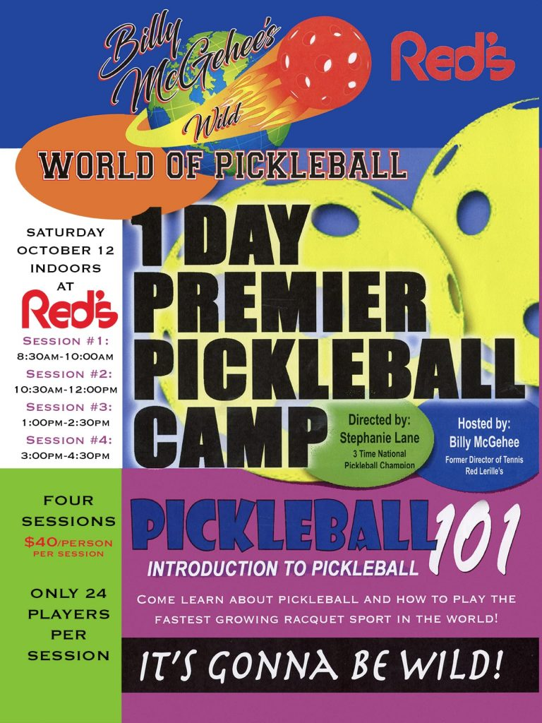1 day pickleball camp